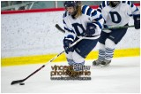 VE1101154-0217-hockey AA.jpg