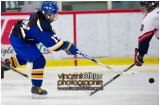 VE1101154-0225-hockey AA.jpg