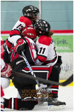 VE1101154-0252-hockey AA.jpg