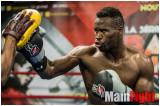 8 oct 2012 entraînement public des boxeurs au club de boxe Orion