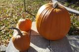 Pumpkins @f8 D700