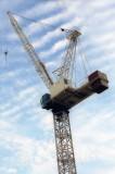 Crane Reala