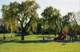 at a park Reala