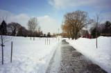 Park in winter Reala