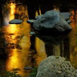 Autumn's Golden Reflections