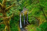 Columbia River Gorge _DSC6618_ds.jpg