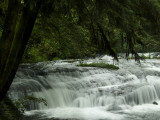 sweet_creek