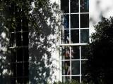 Oval office window