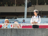 In the Stands