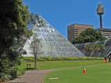 Sydney Botanical Gardens.jpg