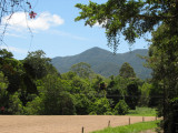 Mount Lewis, Julatten, Queensland.jpg