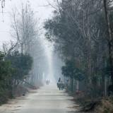 POYANG LAKE NATURE RESERVE - POYANG LAKE, JIANGXI PROVINCE, CHINA (3).JPG