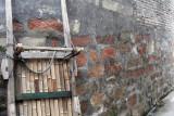 WU CHENG VILLAGE - NANJI HILL RESERVE POYANG LAKE, JIANGXI PROVINCE, CHINA (30).JPG