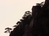 HUANGSHAN NATIONAL PARK - ANHUI PROVINCE CHINA (76).JPG