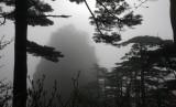 HUANGSHAN NATIONAL PARK ANHUI PROVINCE CHINA (194).JPG