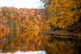 Fall 2009-46-683.jpg