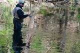 Fishing-3201313230015April 10 2010-667.jpg