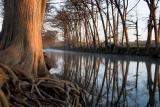 Sunrise, Medina River