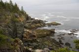 Near Otter Cliff.jpg
