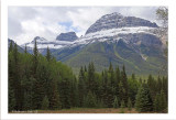 Bow Valley Parkway