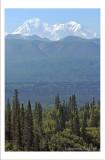 Denali Peak.jpg