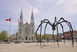 Spider-and-Notre-Dame.jpg