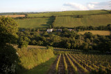 View from Lions Barn, Camel Valley