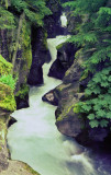 Creek_1976p.jpg