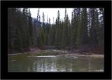 20090521_100_8928_Emerald-Lake.jpg