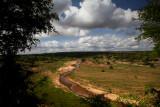 Landscape_0203 (2).jpg