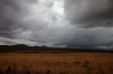 Landscape_0805.jpg