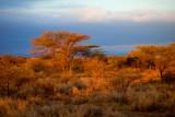 Sunrise landscape-0260.jpg