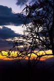 Sunset-9791.jpg