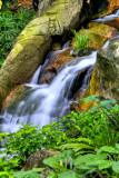Hong Kong 香港 - 香港公園 Hong Kong Park - HDR waterfall at F22 - 1/2, 1/4, 1/8s