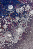 Ice bubbles_M8K8134_2.jpg