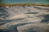 P-town dunes-8323.jpg