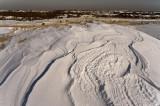 P-town dunes-8403.jpg