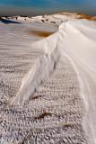 P-town dunes-8404.jpg