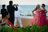 Wedding Party Taking Pictures