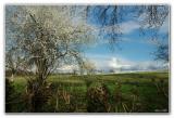 le Printemps sur l'entre deux mers Aquitaine/ Spring in Aquitaine