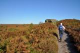 North Yorkshire Moors - 2010