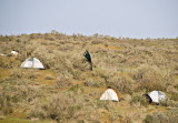 Tents in the steppe