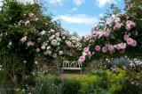 A quiet spot in the Rose Garden