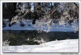 Cold Creek004 copy.jpg