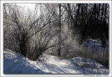 Cold Creek014 copy.jpg