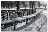 Chilly Bench.jpg