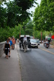 Horse Drawn Carriage - Main St New Hope