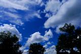 18mm Sky/Landscape