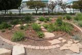 Oasis Garden (0602)