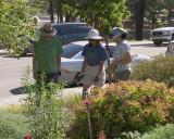 Master Gardeners (2584)